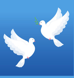 White doves with olive twig on a blue background vector