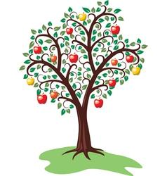 apple tree vector image vector image