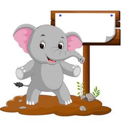 elephant cartoon with a blank sign vector image