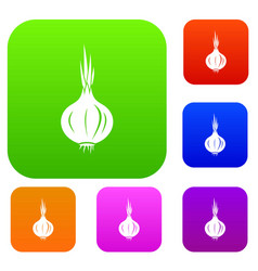 onion set collection vector image vector image