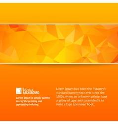 Orange triangle banner vector image vector image