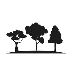 silhouette trees forest branch foliage botanic vector image vector image