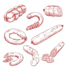 Assortment of fresh meat sausages red sketch icons vector image