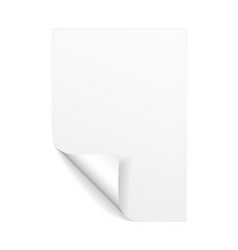 blank a4 sheet white paper with curled corner vector image