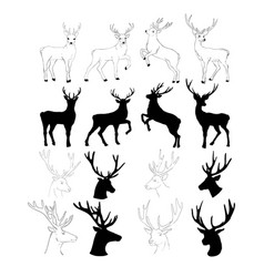 Graphic stylization deer head for your design vector