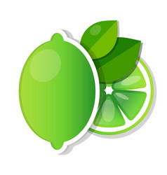 Lime fruit green with slices and leaves vector
