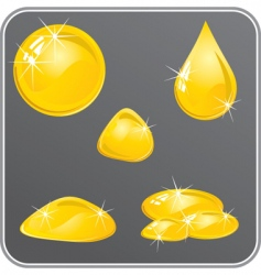 oil or honey drops set vector image