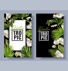 Tropic orchid banners vector