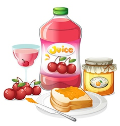 Uses of cherries and oranges vector image
