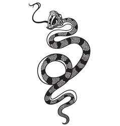 snake tattoo black white vector image vector image