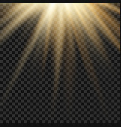 sun light lens yellow flare template vector image vector image