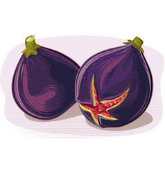 Figs on a white background vector