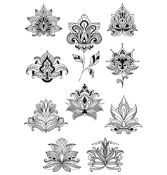 Indian persian and turkish paisley flowers vector