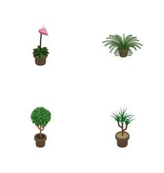 Isometric houseplant set of tree grower vector