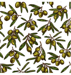 Olives sketch pattern background vector