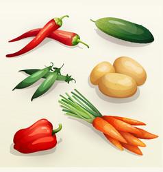 set various fresh vegetables vector image