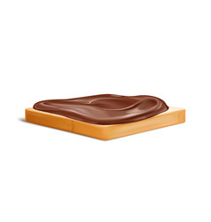 Slice of bread with chocolate cream realistic vector
