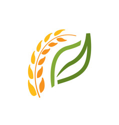 Wheat spike symbol vector