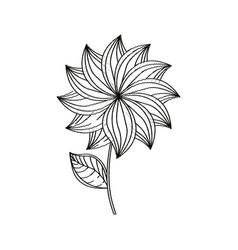 dahlia flower decoration sketch vector image vector image