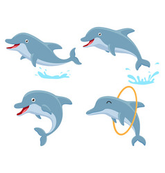 cute dolphin cartoon collection set vector image