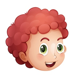 A face of a curly haired young man vector image