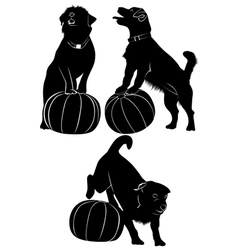 Dog and ball vector