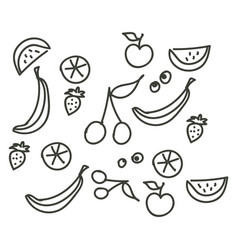 fruit stroke line hand drawn design on white vector image