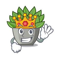 King cartoon echeveria cactus in cactus garden vector