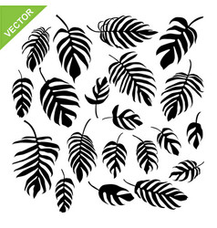 Monstera leaves silhouettes vector