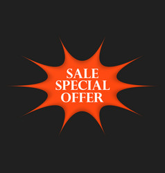 sale special offer sticker vector image