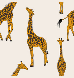 seamless giraffe pattern african animal nursery vector image