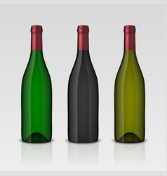 set of 3 realistic wine bottles without vector image