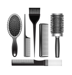 set of grooming and curling radial hair brush vector image