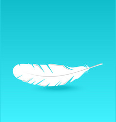 White feather falling vector image