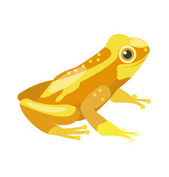 Frog cartoon tropical yellow animal cartoon nature vector