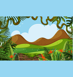 a beautiful jungle landscape vector image