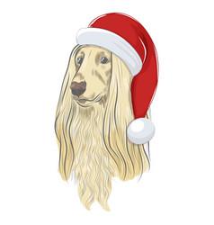 Afghan hound wears christmas hat vector