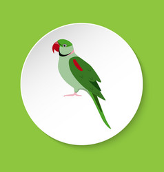 alexandrine parrot icon in flat style vector image