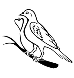 bird heart vector image