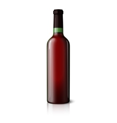 Blank green realistic bottle for red wine isolated vector
