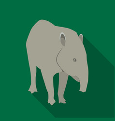 mexican tapir icon in flat style isolated on white vector image