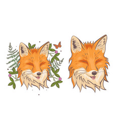 the head a fox surrounded clover and fern vector image
