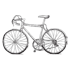 vintage bicycle hand drawn vector image