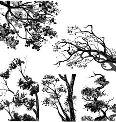 TREES - Drawn Watercolor vector image vector image