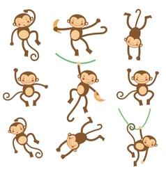 Cute funny monkeys vector image