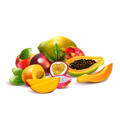 fruity tropical bunch composition vector image
