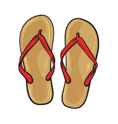 pair of flip flops summer time vacation attribute vector image