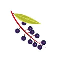 Bird Cherry Flat Sticker vector image