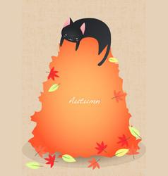 black cat sleep on garbage autumn leaves vector image