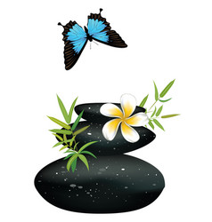 Black pebble with flower vector